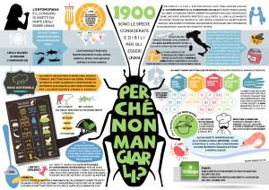 Infographics by Barbara Pollini