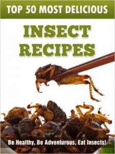 Insect Recipes_Julie Hatfield