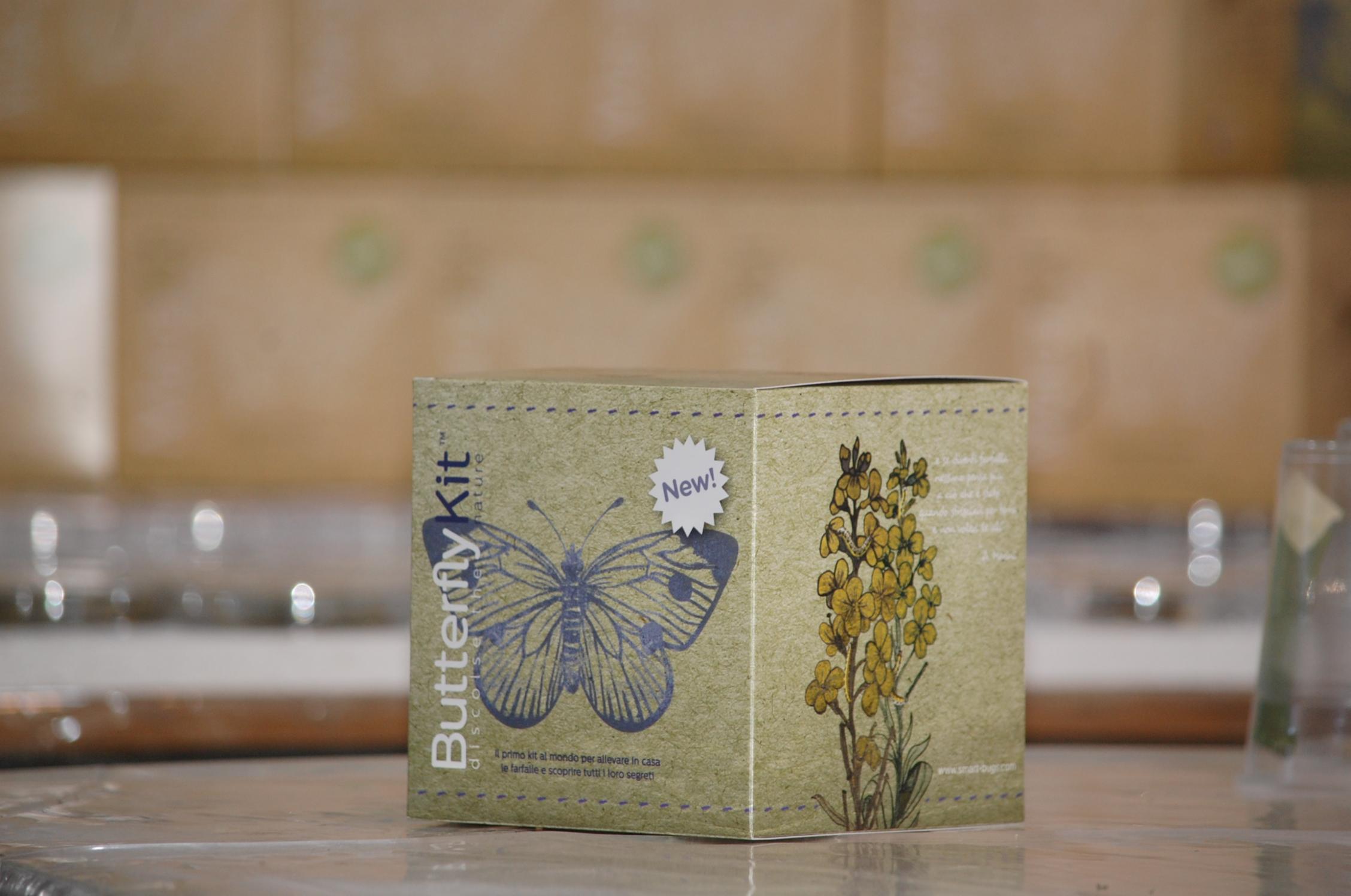 butterfly kit box