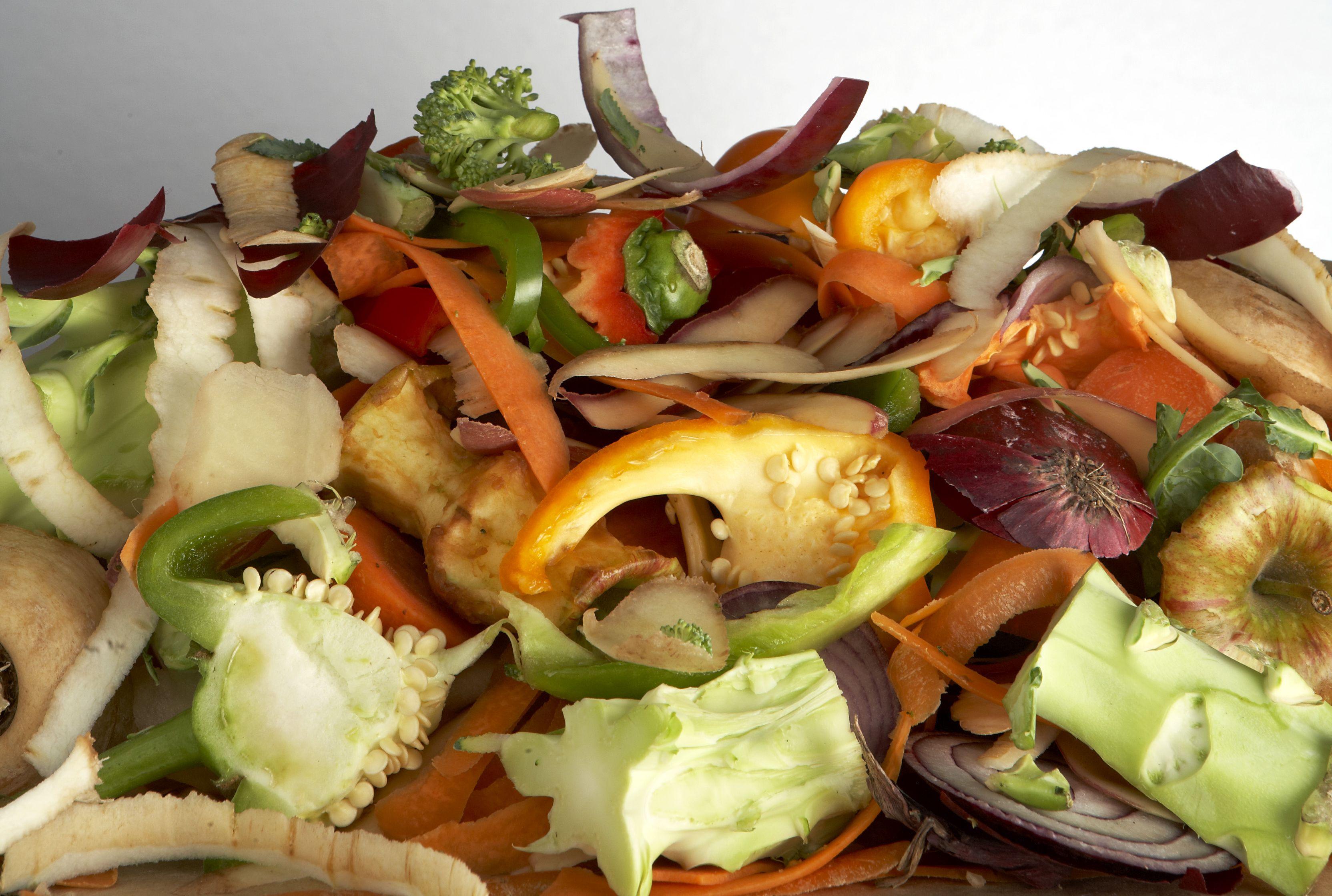 food-waste-rubbish