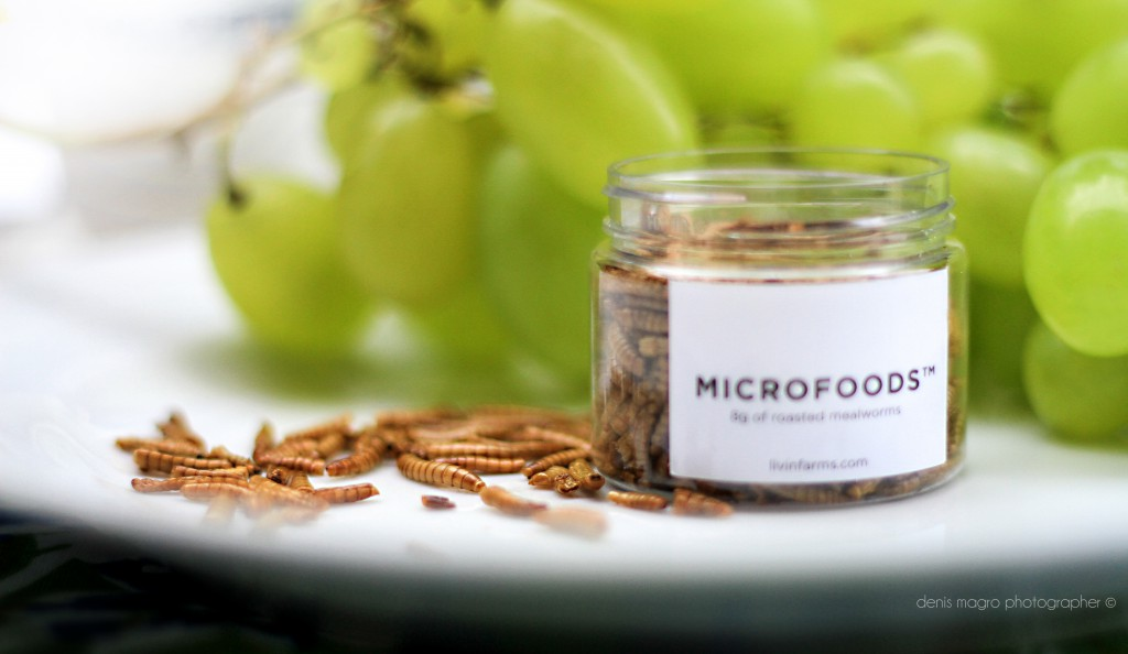 Denis Magro for MicroFoods