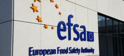 EFSA building