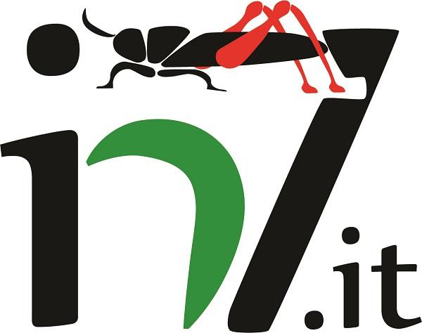 Logo_in7_Med