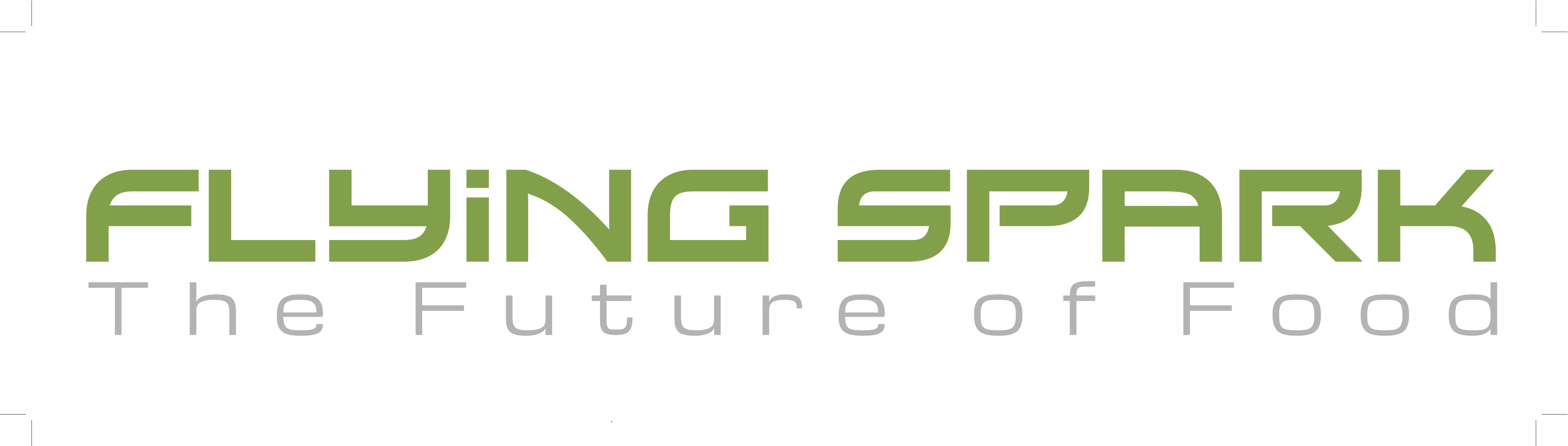 FlyingSpark logo