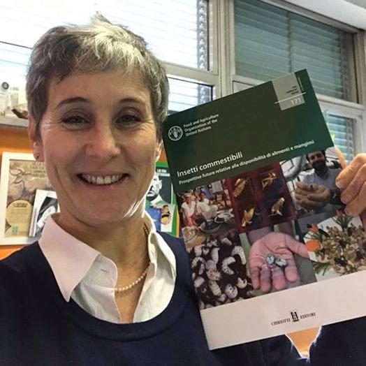 Gasco_Libro Insetti Commestibili FAO1