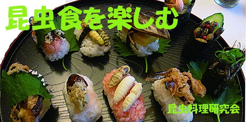Isenct Cuisine logo
