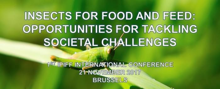 IPIFF Conference 2017