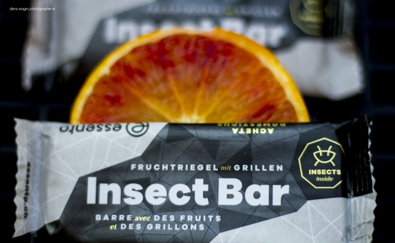 Edible insect bar