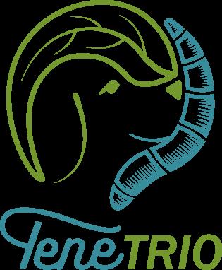 TeneTrio_Logo 2018