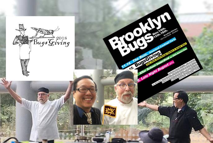 Brooklyn-Bugs