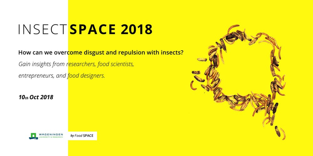 Insects Space 2018