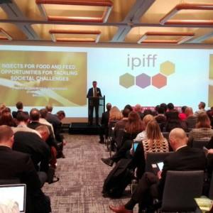 Ipiff conference
