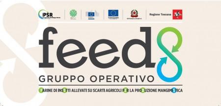 Logo Feeds