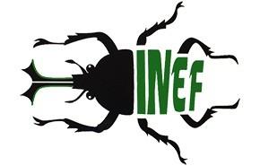 inef-insect-novel-ecologic-food-logo