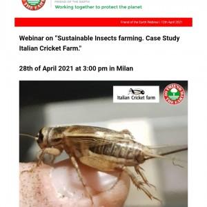 Webinar Italian Cricket Farm